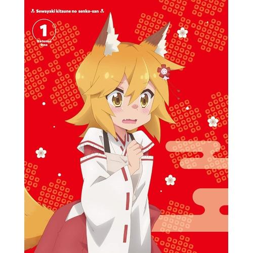 DVD/世話やきキツネの仙狐さん Vol.1/TVアニメ/ZMBZ-13291