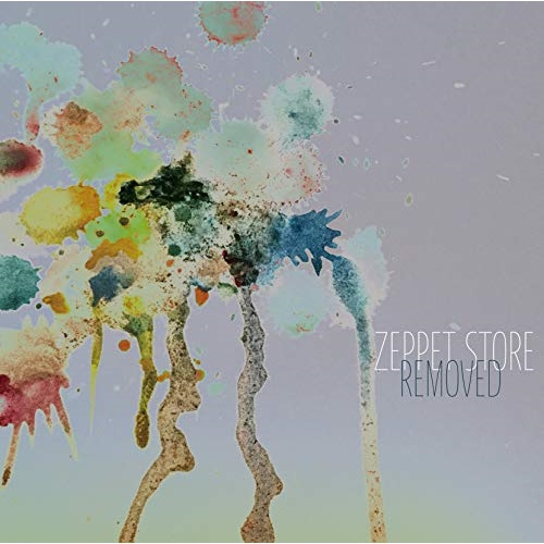 CD REMOVED お得 ☆送料無料☆ 当日発送可能 ZEPPET STORE ZCST-50