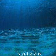 【送料無料】 USED カドマツトシキ 角松敏生 On The City Shore [Audio CD]