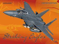 【中古】プラモデル 1/48 F-15E ストライクイーグル 「リミテッドエディションシリーズ」 [1177]
