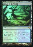 【中古】マジックザギャザリング/日本語版FOIL/R/イーブンタイド/土地 [R] : 【FOIL】溢れかえる果樹園 /Flooded Grove