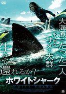 中古 Seasonal Wrap入荷 洋画DVD 正規品 ホワイトシャーク