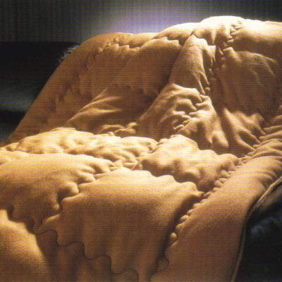 [全商品P5倍]送料無料 天空の大自然から届けられたアンデスの至宝。「ビキューナ」ビキューナ掛ふとん 4F 6190(インテリア 収納 羽毛布団 秋 冬 シングル用 西川 京都 ギフト プレゼント 贈り物 ふとん 掛け布団 羽毛ぶとん 通販 )