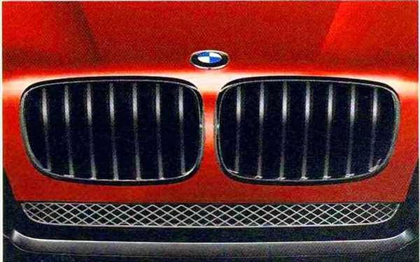 X6 パーツ BMW Performanceブラック・キドニー・グリル BMW純正部品 FG35 FG44 FH44 オプション アクセサリー 用品 純正 グリル