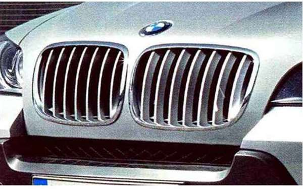 X5 パーツ キドニー・グリル・チタン BMW純正部品 KS30S KS30 KR44S KR44 オプション アクセサリー 用品 純正 グリル
