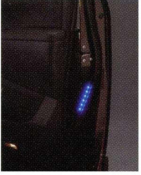 『エルグランド』 純正 PE52 セーフティイルミネーション パーツ 日産純正部品 ELGRAND オプション アクセサリー 用品