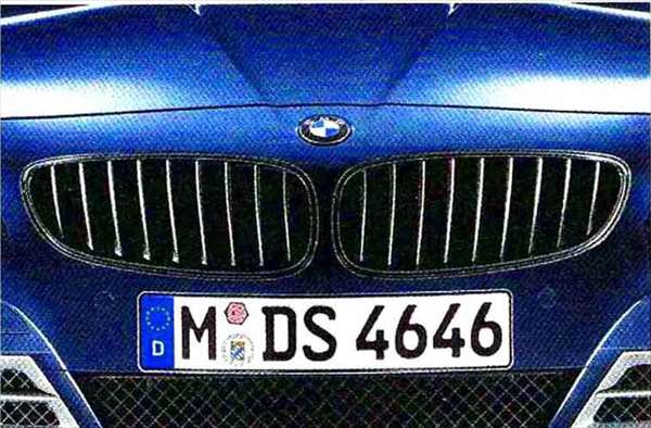 Z4 パーツ ブラック・フロント・グリル BMW純正部品 LL20 LM30 LM35 オプション アクセサリー 用品 純正 グリル