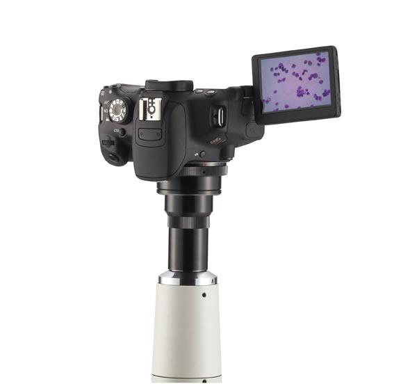 キャノン 一眼レフD画像システム EOSX7i