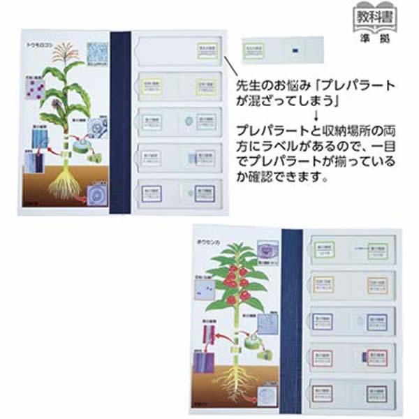 植物の分類学習用 プレパラート 単子葉 双子葉セット 図解 保管ケース付き