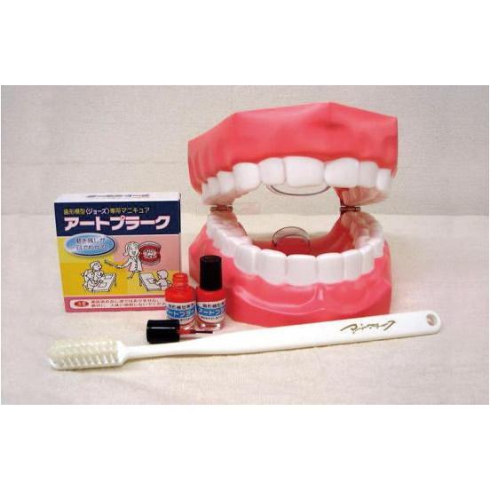 アートプラーク(人工歯垢)・ジョーズ(歯型模型)セット (歯みがき指導用)