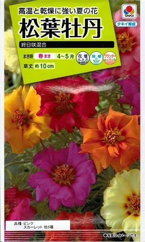 艶やかな花が楽しめる 花種子 新品 送料無料 タキイ種苗 松葉牡丹 海外並行輸入正規品 0.3ml袋詰 終日咲混合