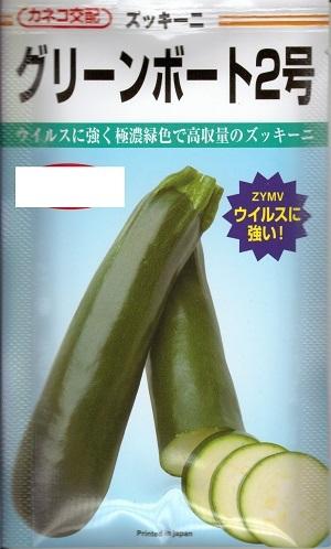 ウイルスに強く極濃緑色で高収量のズッキーニ 野菜種子 ずっきーにたね 日本正規代理店品 カネコ種苗 100粒袋詰 送料無料 増量種子 お求めやすく価格改定 グリーンボート2号