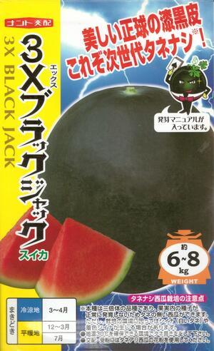 ブラックジャックが生み出す新しい価値 数量は多 人々をスイカの虜にしよう 野菜種子 たねなし西瓜 70%OFFアウトレット ナント交配 ナント種苗 3Xブラックジャック 送料無料 8粒袋詰