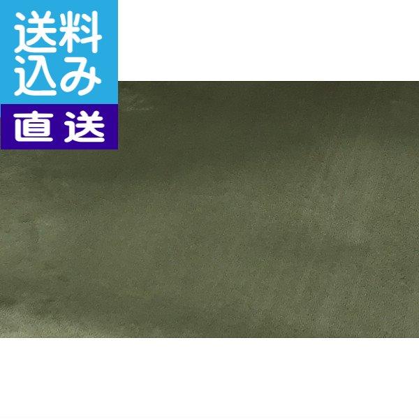 【送料込み/直送】お掃除簡単ラグ≪グリーン≫〈イーズGN220320〉 センタ-ラグ/出産内祝い 内祝い お返し 快気祝い 新築内祝い 引き出物 法事 香典返し [W-F](ce)