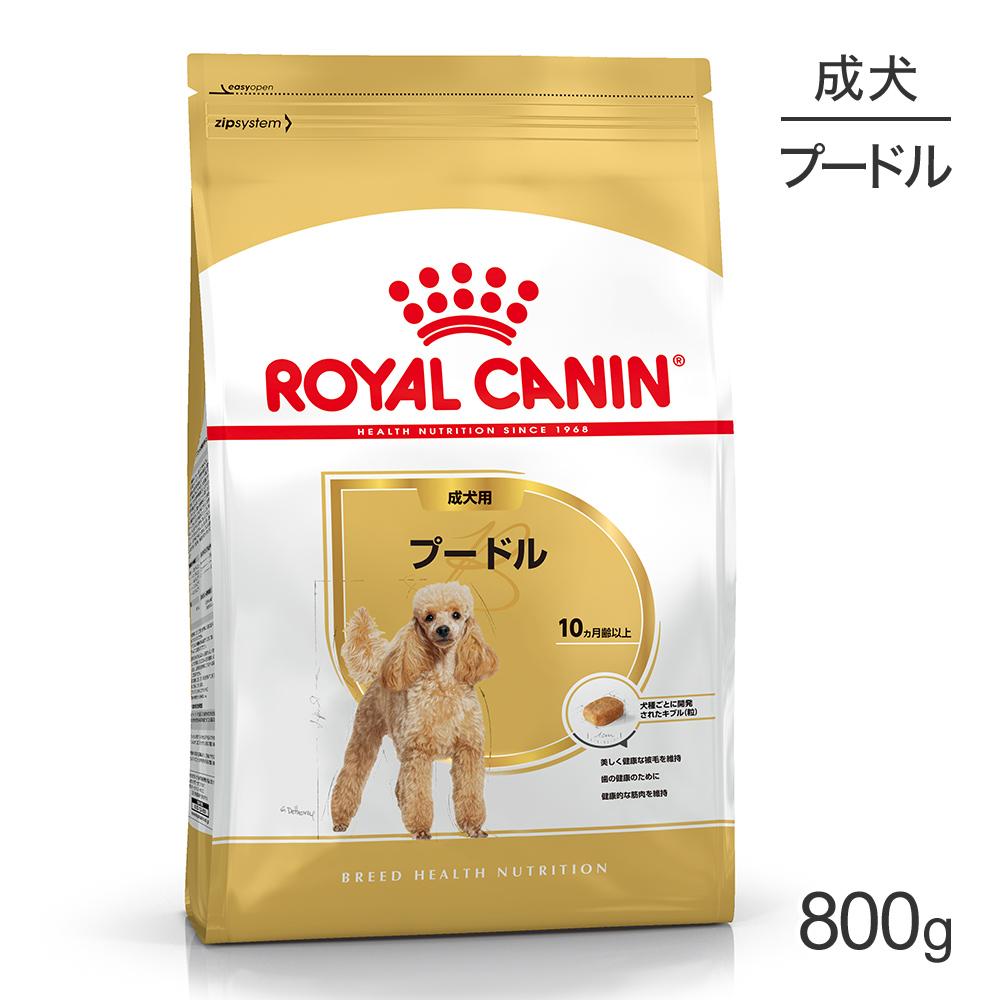ロイヤルカナン プードル 成犬用 800g 卸売り 正規品 バースデー 記念日 ギフト 贈物 お勧め 通販