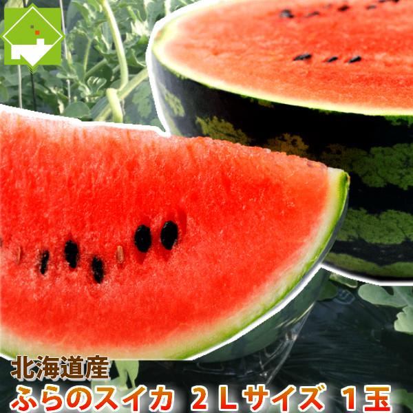 北海道富良野産 スイカ 2Lサイズ 6-7.5kg1玉<BR><BR>【10P03Dec16】