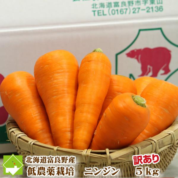 ニンジンジュース用 有機肥料を使用したあま~い人参 にんじん 5kg 北海道富良野産 低農薬栽培 訳あり マーケティング 人参 規格外 同梱不可 SサイズからLサイズ込 送料無料限定セール中
