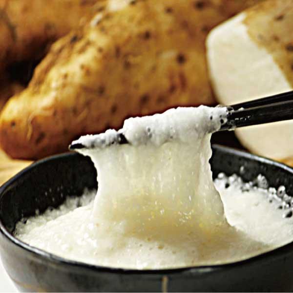 甘くて栄養満点 北海道産 長芋 ながいも 500g以上 数量限定 1-3本入り 10P03Dec16 完全送料無料