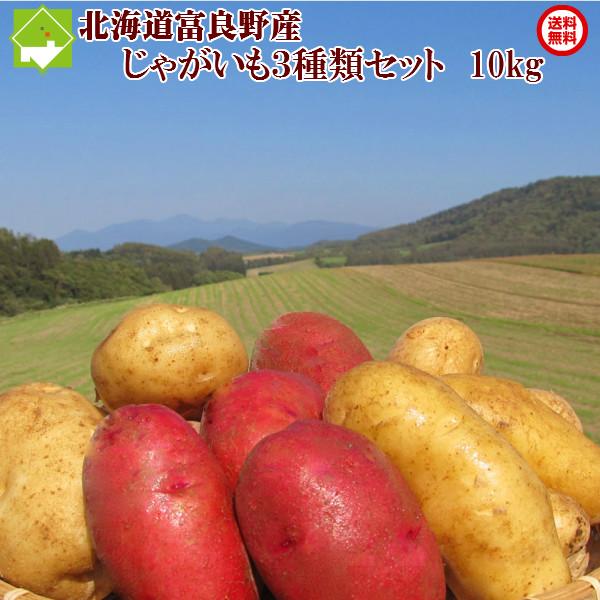 北海道産 新じゃが 3種類セット じゃがいも 送料無料 3種類 男爵 価格 交渉 レッドムーン 買い物 別途送料が発生する地域あり メークイン 10kgセット