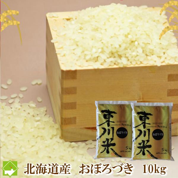 北海道産 おぼろづき 10kg【10P03Dec16】