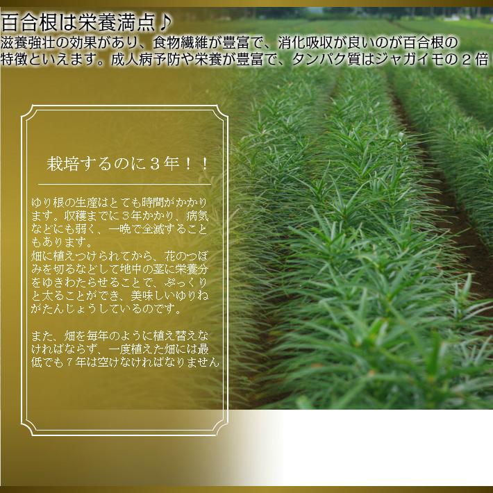 ゆり根北海道富良野産訳あり百合根1kg 2セット購入で2セットおまけの4kg