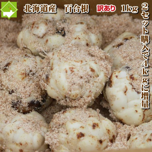 ゆり根北海道富良野産訳あり百合根1kg送料無料 2セット購入で2セットおまけの4kg