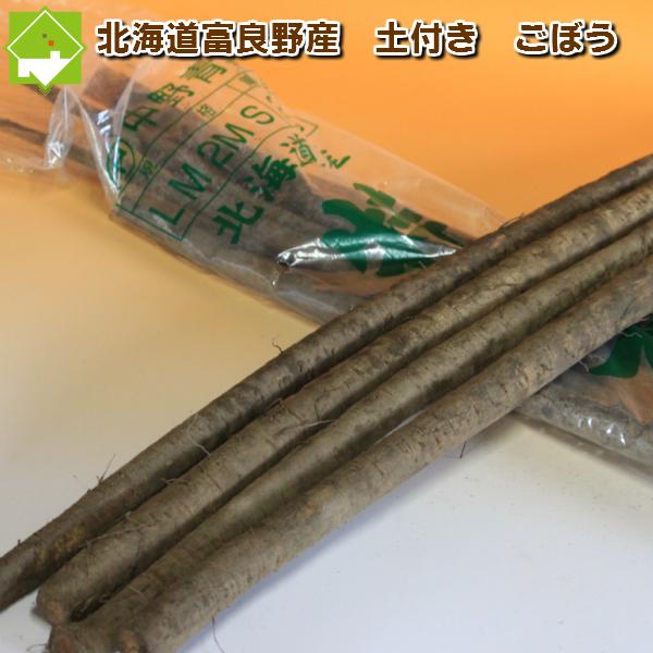 北海道産 土付き ごぼう 10kg【10P03Dec16】