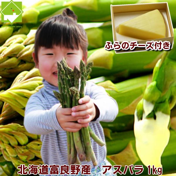 アスパラ 北海道富良野産 グリーンアスパラ・手づくりチーズセット【送料無料】 【父の日ギフト対応】