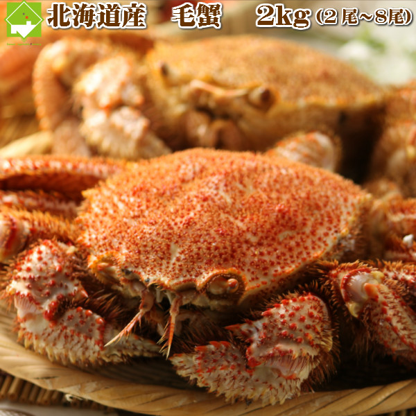 北海道産 毛がに 蟹 お歳暮 送料無料 毛蟹 2~8尾入 約2kg詰