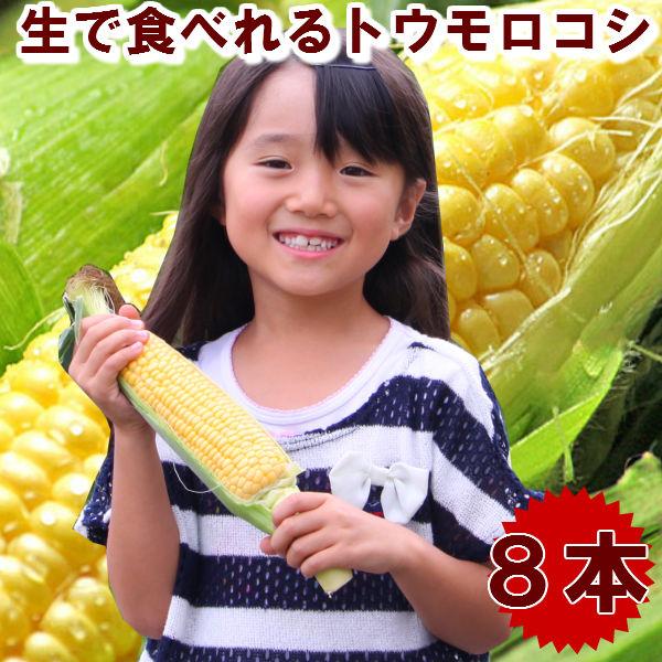 TVで人気の生でも甘いフルーツトウモロコシ とうもろこし 北海道富良野産 フルーツトウモロコシ 恵味 Lサイズ 送料無料 入荷予定 海外並行輸入正規品 別途送料が発生する地域あり 8本入