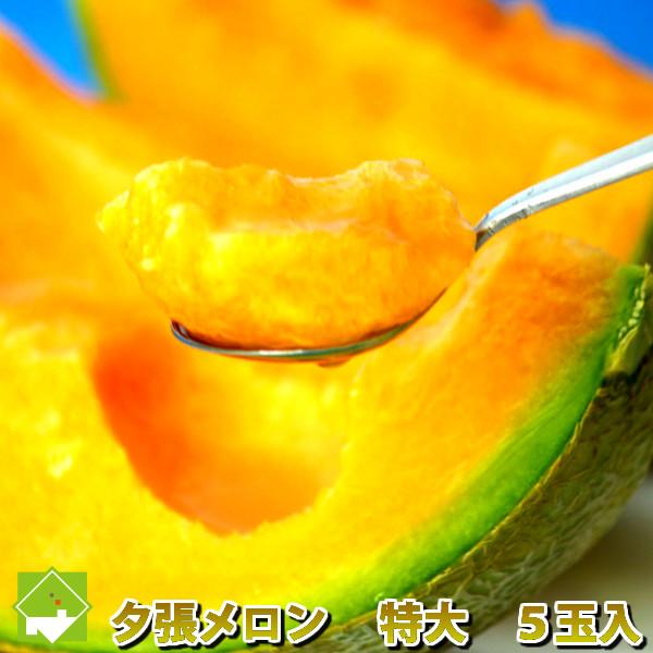 北海道 夕張メロン 特大2kg以上 5玉入り 【送料無料】【10P03Dec16】