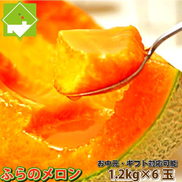 北海道富良野産 最高級 赤肉メロン 1.2キロ以上 6玉入り【送料無料】【あす楽対応_北海道】