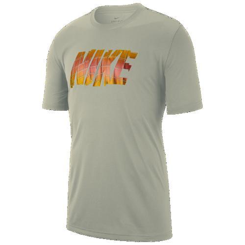 (取寄)ナイキ メンズ レジェンド ショート スリーブ ブロック Tシャツ Nike Men's Legend Short Sleeve Block T-Shirt Spruce Fog