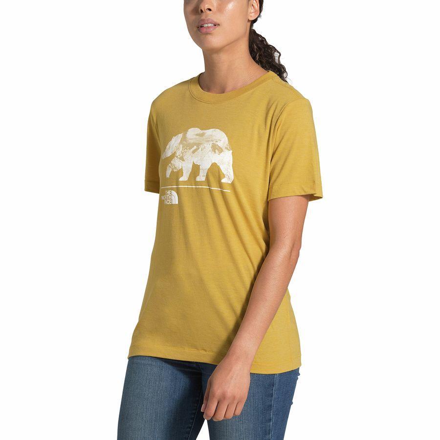 (取寄)ノースフェイス レディース ベアリンダ Tri-Blend Tシャツ The North Face Women Bearinda Tri-Blend T-Shirt Golden Spice Heather