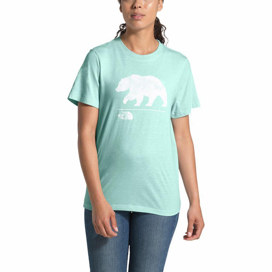 (取寄)ノースフェイス レディース ベアリンダ Tri-Blend Tシャツ The North Face Women Bearinda Tri-Blend T-Shirt Windmill Blue Heather