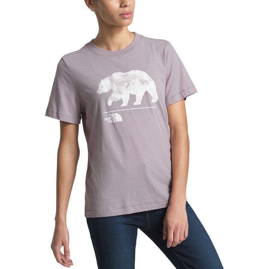 (取寄)ノースフェイス レディース ベアリンダ Tri-Blend Tシャツ The North Face Women Bearinda Tri-Blend T-Shirt Ashen Purple Heather