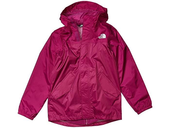 (取寄)ノースフェイス キッズ ストーミー レイン トリクライメイト (リトル キッズ/ビッグ キッズ) The North Face Kid's Stormy Rain Triclimate (Little Kids/Big Kids) Wild Aster Purple