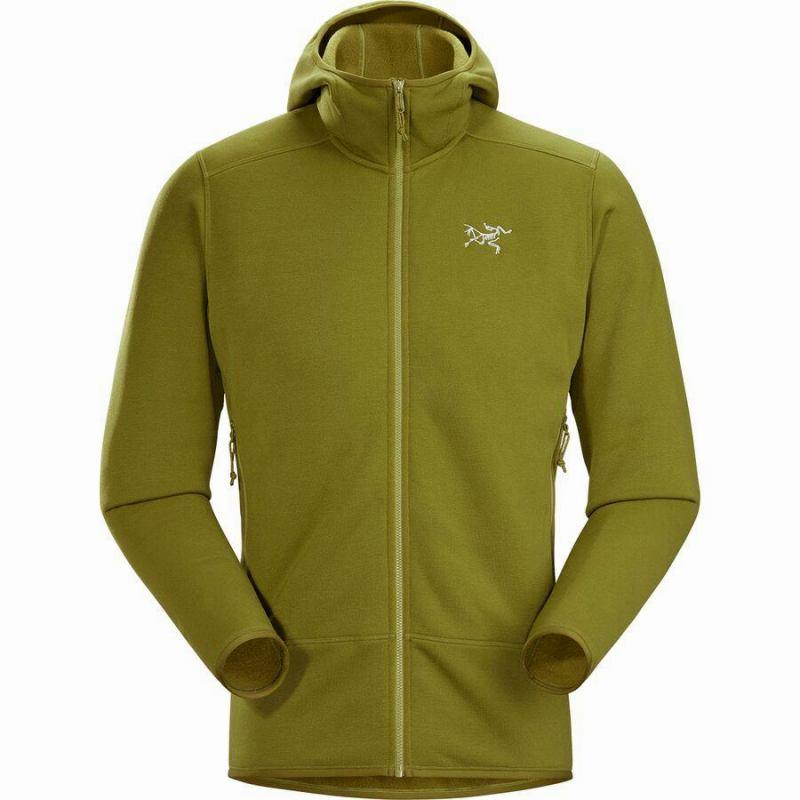 ハイキング 登山 マウンテン アウトドア ウェア アウター 早割クーポン 大きいサイズ ビッグサイズ 取寄 アークテリクス メンズ フリース Fleece ジャケット Kyanite フーデッド 未使用 Men's Arc'teryx Hooded Elytron カイヤナイト Jacket