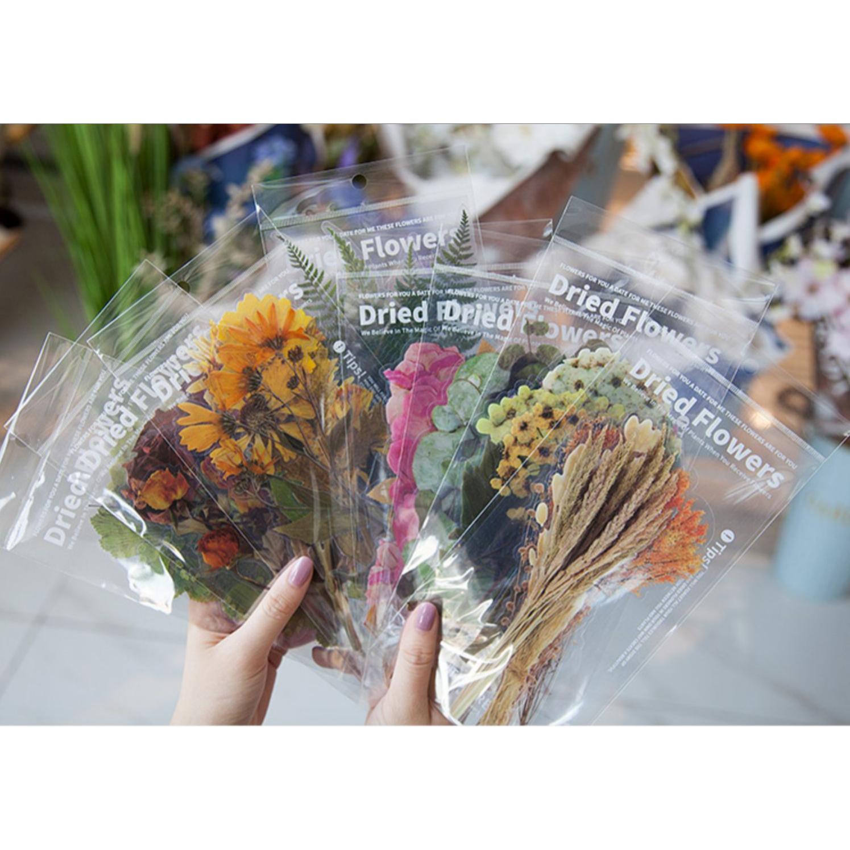 Dryed 国内正規品 Flowers Sticker s63 ドライフラワー LARGE 大きめ 人気急上昇 リアル 鮮やか 透明 クリア カラフル デコ 植物 お花 コラージュ アレンジ おしゃれ シール 花 ステッカー DIY 珍しい