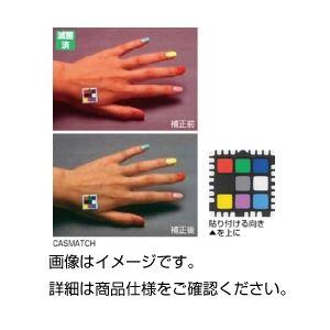 (まとめ)画像補正用カラーチャートCASMATCH【×3セット】
