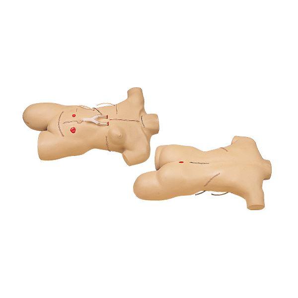 外科包帯法シミュレーター/看護実習モデル人形 【手術創/全身14ヶ所】 M-111-2【代引不可】