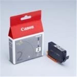 (業務用40セット) Canon キヤノン インクカートリッジ 純正 【PGI-2GY】 グレー(灰)