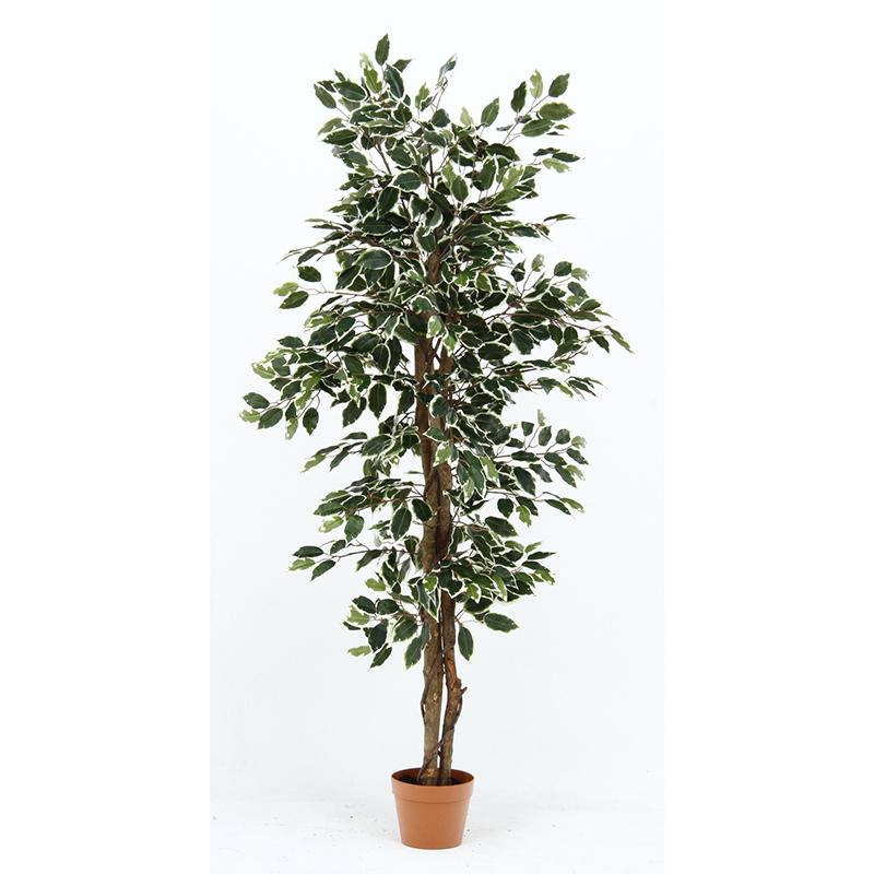 観葉植物 フィカス 人工観葉植物 5☆大好評 フェイクグリーン 造花 引っ越し祝い 送料無料 新築祝い インテリア 雑貨 好評 かわいい おしゃれ