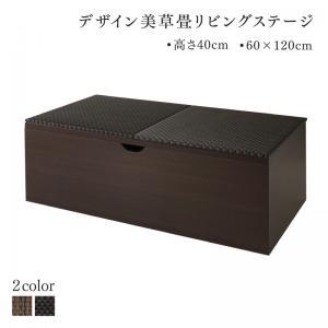 国産 収納付きデザイン美草畳リビングステージ 風凛 フーリン 畳ボックス収納 120×60cm ハイタイプ