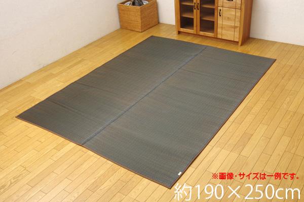 い草ラグ カーペット 3畳 国産 シンプル モダン 『Fルーツ』 ブラウン 約190×250cm(裏:ウレタン)