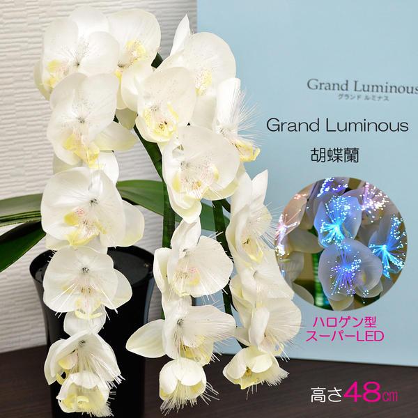 グランドルミナス/05胡蝶蘭/高さ48cm/LED/盆提灯/盆ちょうちん/灯篭/造花