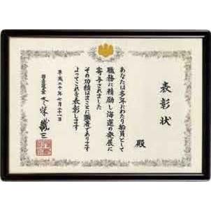 匠(たくみ) 各省庁 大臣賞 T-11