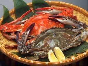 【送料無料】愛知県 活〆 渡り蟹 ワタリガニ ガザミ オス 2kg 5匹~9匹