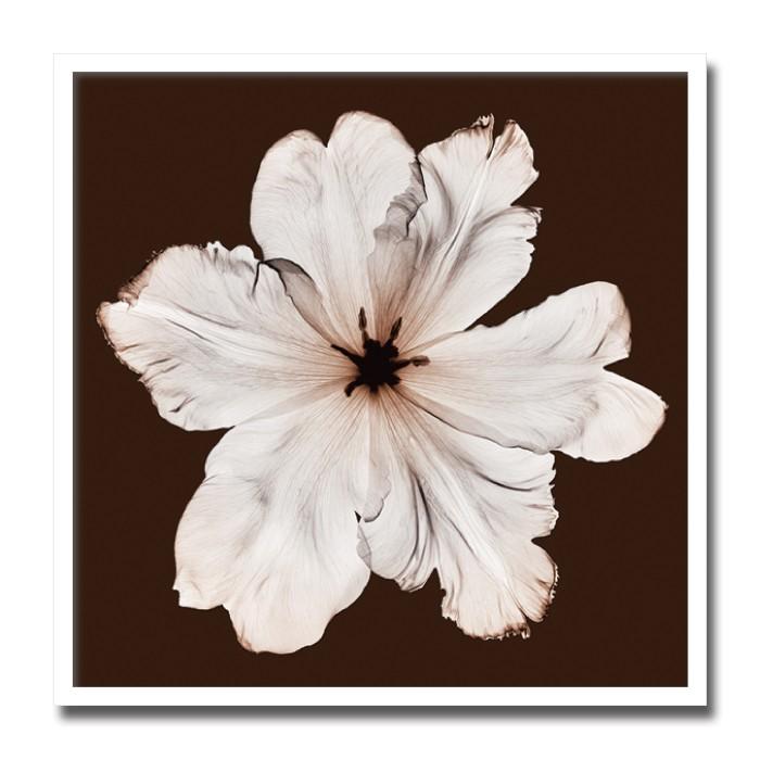 【SIMPLEMODERN 癒しのインテリア】絵画 花 植物 大型 Ruffled Tulip 壁掛け インテリア 絵 おしゃれ 壁絵 ポスター アート 北欧 サロン ヴィラ モデルハウス 海外インテリア