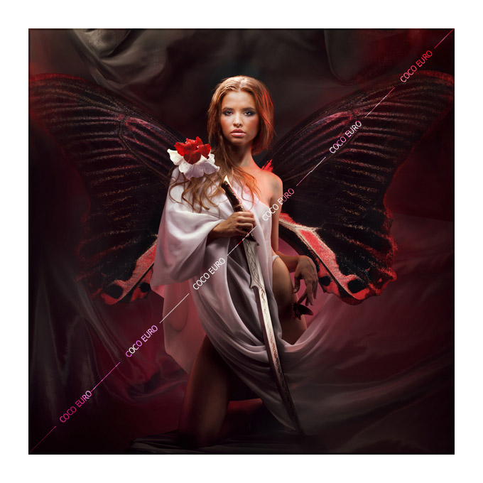 絵画 インテリア PLEXIGLAS Butterfly wings SIZE mm 750*750 アート 装飾 壁 絵 ココ コブラアート正規品 高級 フレームレス